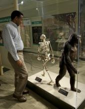 Dr. Yohannes Haile-Selassie, curator of physical anthropology at The Cleveland Museum of Natural History, oversaw the making of Lucy