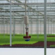 Sprinkler  head at the ready for misting growing crops.
