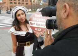PETA protestors used what they called 'Sexy Pilgrim' garb to call attention to their cause