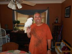 Tony Zingale and his cockatoo, Opie, from Euclid Ohio.