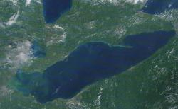 Algae blooms pictured in the Western Basin of Lake Erie on August 4, 2014. (NOAA)