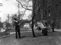 Trimming a tree outside Edison School in 1940.