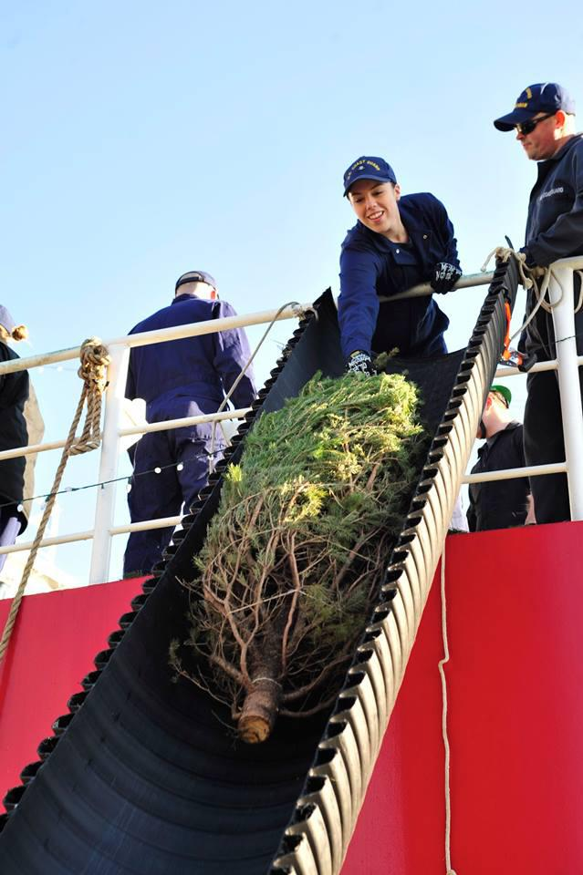 Recalling The Great Lakes Doomed Christmas Tree Ship Great Lakes