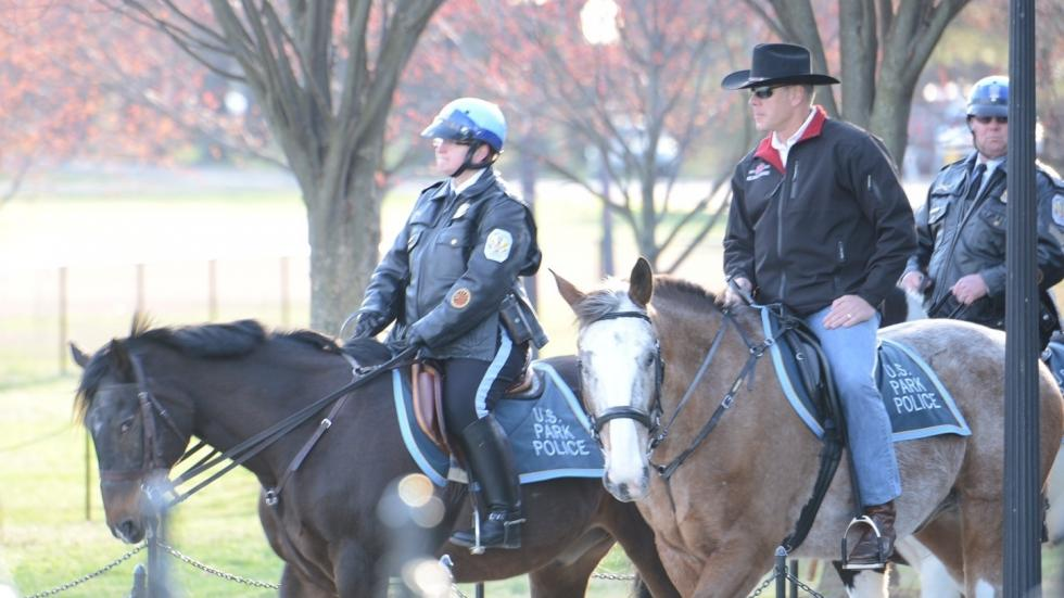 New Interior Secretary Rides A Horse To First Day On The Job Ideastream