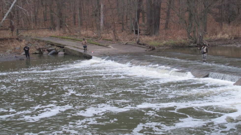 Other anglers gather to try to catch a steelhead (pic: Brian Bull)