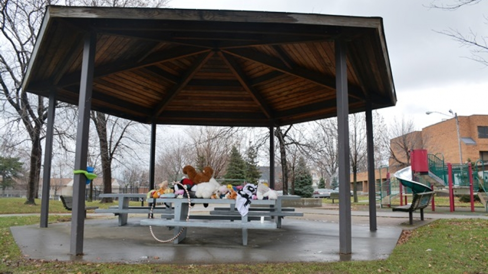 A police officer fatally shot Tamir Rice in the park outside Cudell recreation center in Cleveland.