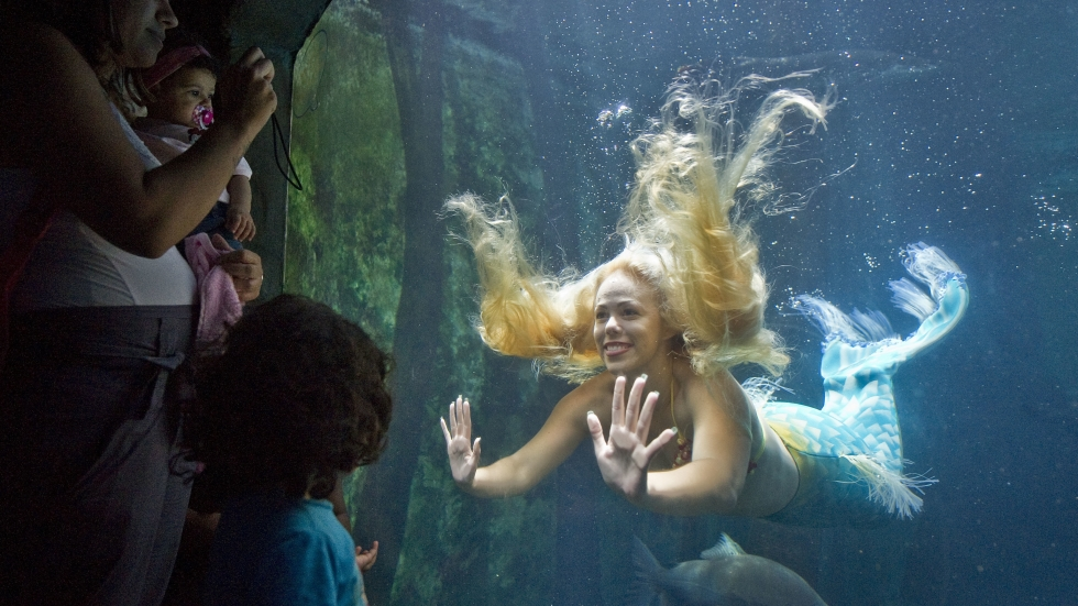 Mermaids' And 'Mermen' Of Brazil Refuse To Be Tamed | NPR