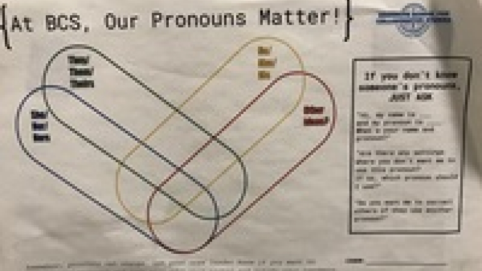 A poster, part of a lesson that Milo Chesnut's school did at the beginning of the year. All students shared their pronouns and then teachers and staff learned the pronouns.