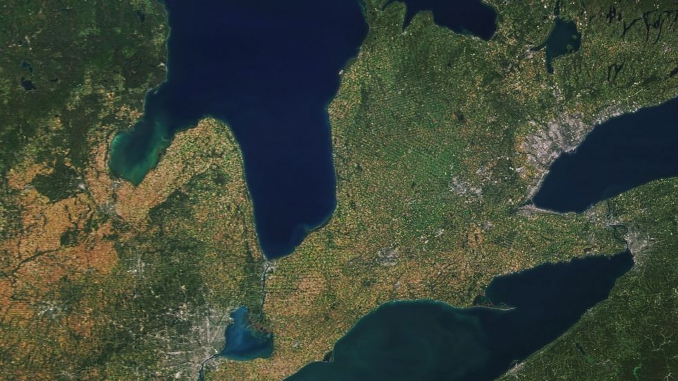 An image of Lake Erie captured by NASA on September 24, 2017, showing one of the largest algal blooms in the lake on record.