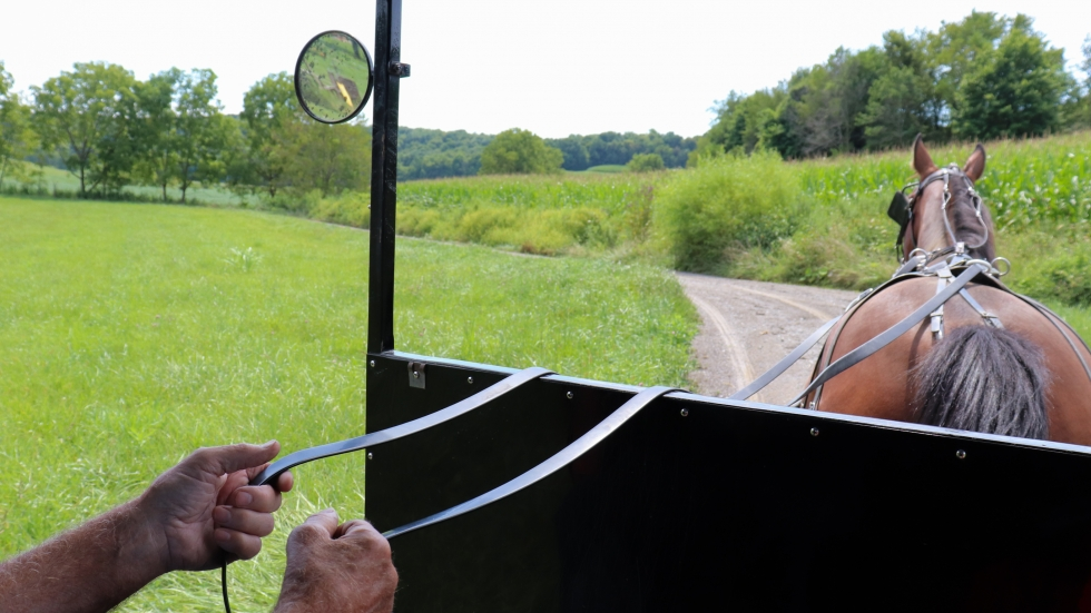 There are more than 35,000 Amish people living in Holmes County, Ohio.