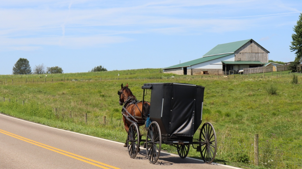 A horse and buggy drive through Holmes County, the heart of Ohio's Amish settlement.