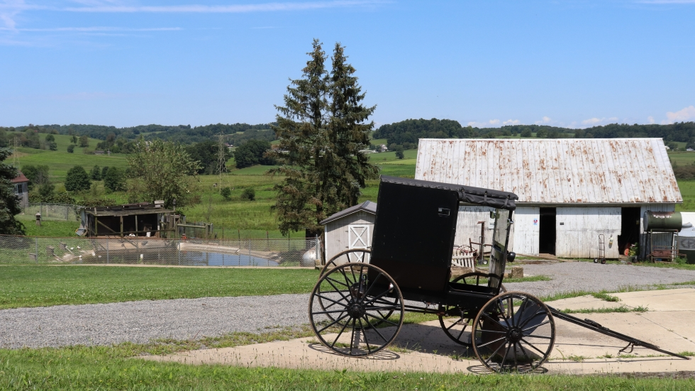 A buggy on the side of the road in Holmes County, Ohio.