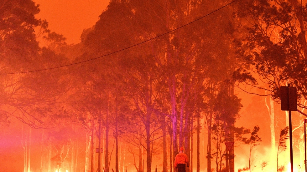 A firefighter walks past burning trees near Nowra, New South Wales.