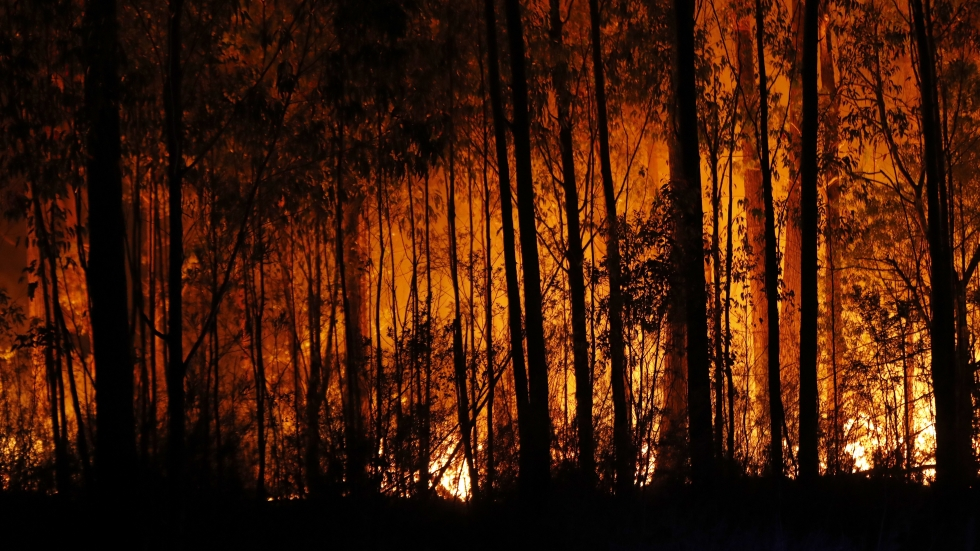 Bushfires are seen between the towns of Orbost and Lakes Entrance in East Gippsland on Thursday. HMAS Choules evacuated thousands of people stranded in the remote coastal town of Mallacoota.