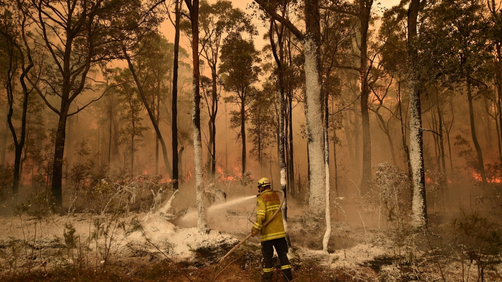 A firefighter sprays foam retardant on a back burn ahead of a fire front in the New South Wales town of Jerrawangala on New Year's Day.