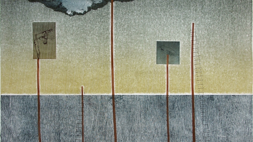 """Flooded Garden2013 Intaglio, relief, monoprint, chine colle' on hand-made paper 32""""x32.5"""""""