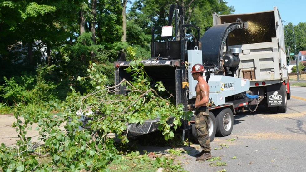 A man feeds tree branches into a wood chipper.