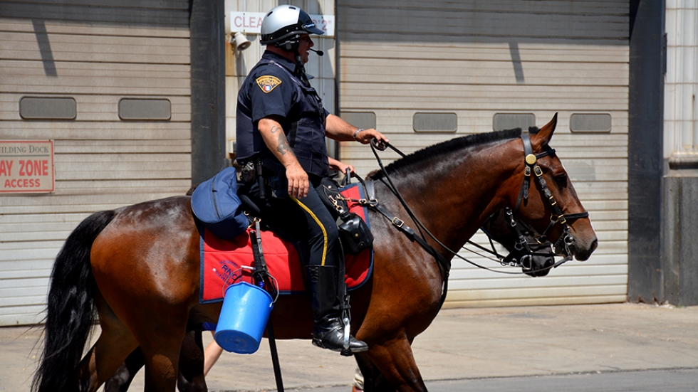 A mounted Cleveland police officer rides through the city during the Republican National Convention in July 2016.