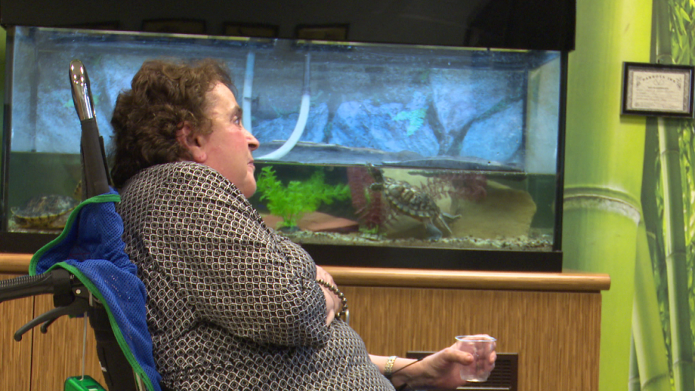 Elaine Miller watches the birds in the nature room at Menorah Park. (Photo: ideastream)