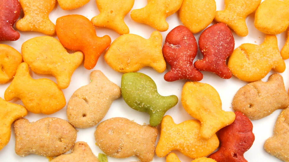 An assortment of different color Goldfish crackers.