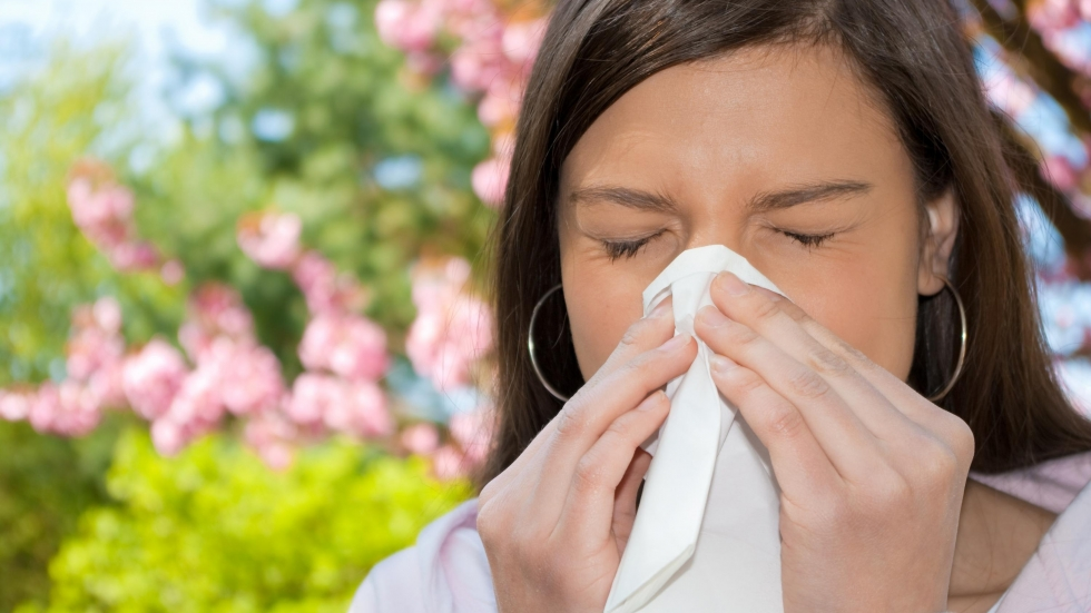 The official pollen count will likely continue to be high this spring in the Cleveland area. Image: Shutterstock
