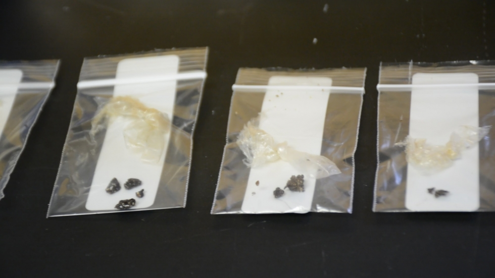Drug samples with fentanyl analogs in plastic bags at Lake County Crime Lab