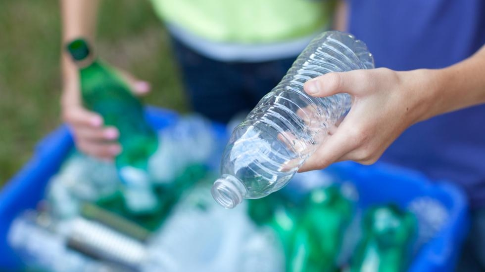 Two people place glass and plastic bottles into a recycling bin. [spwidoff, Shutterstock]