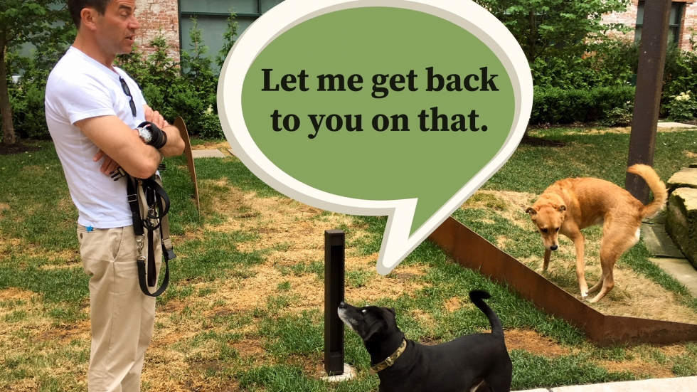 "A man with his arms crossed, holding a leash, exchanging looks with a small black dog while a ginger-colored dog sniffs the grass nearby. The black dog has a thought bubble that says, ""Let me get back to you on that."""