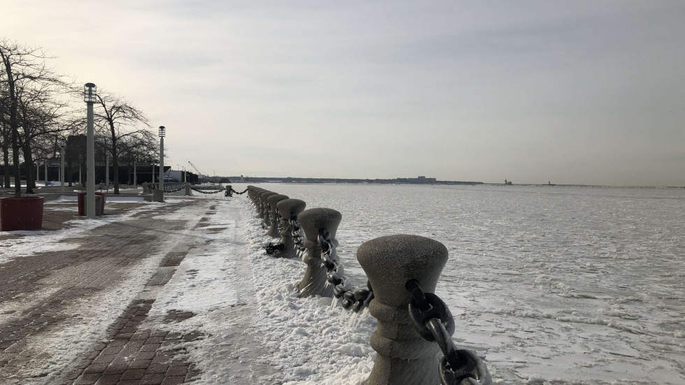 Frozen Lake Erie in January 2019 [Elizabeth Miller/ideastream]