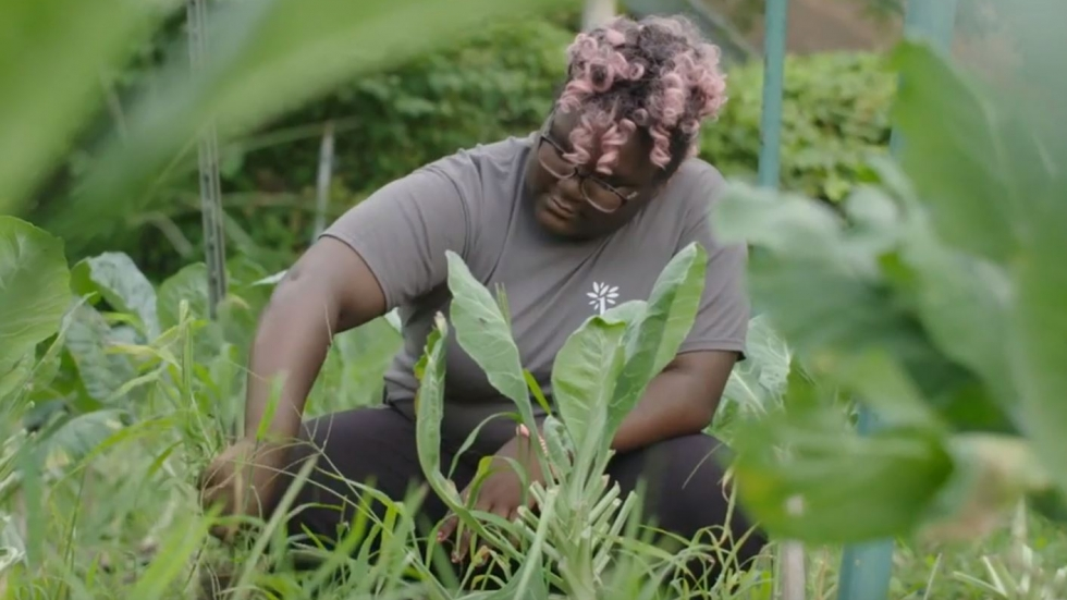 A woman gardens with the Cleveland Botanical Gardens Green Corps program.