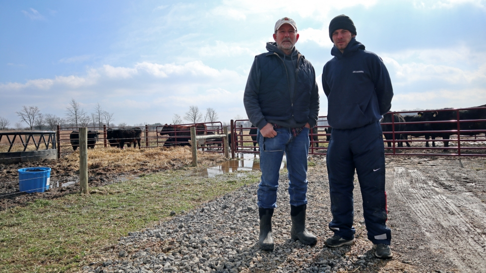Two men stand on  gravel road looking at the camera. On the left is a man in his 60s, the other is in his 20s. It is a sunny day. There are about a dozen cows in the pen behind them.