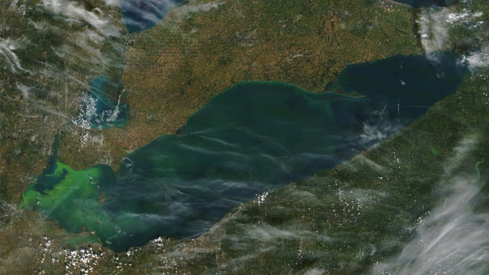 A satellite of photo of Lake Erie with algae blooms seen from space.