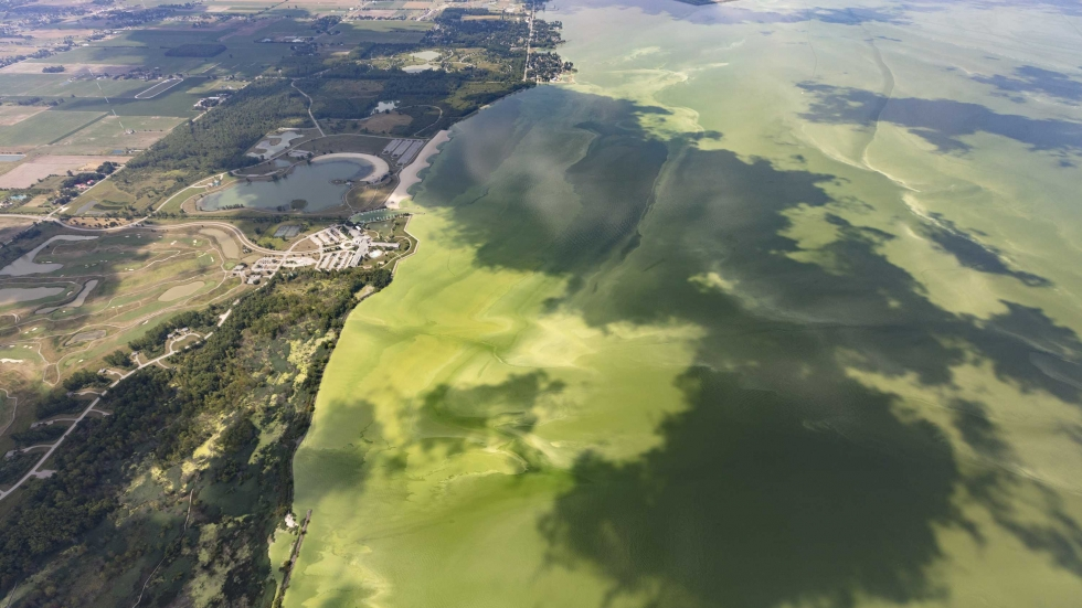 An aerial photo taken Aug. 15 shows the algal bloom in Lake Erie's western basin.