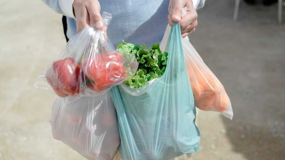 A person holding a plastic bag full of produce