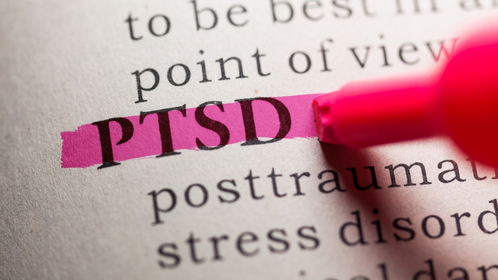 Dictionary with PTSD highlighted in pink marker.