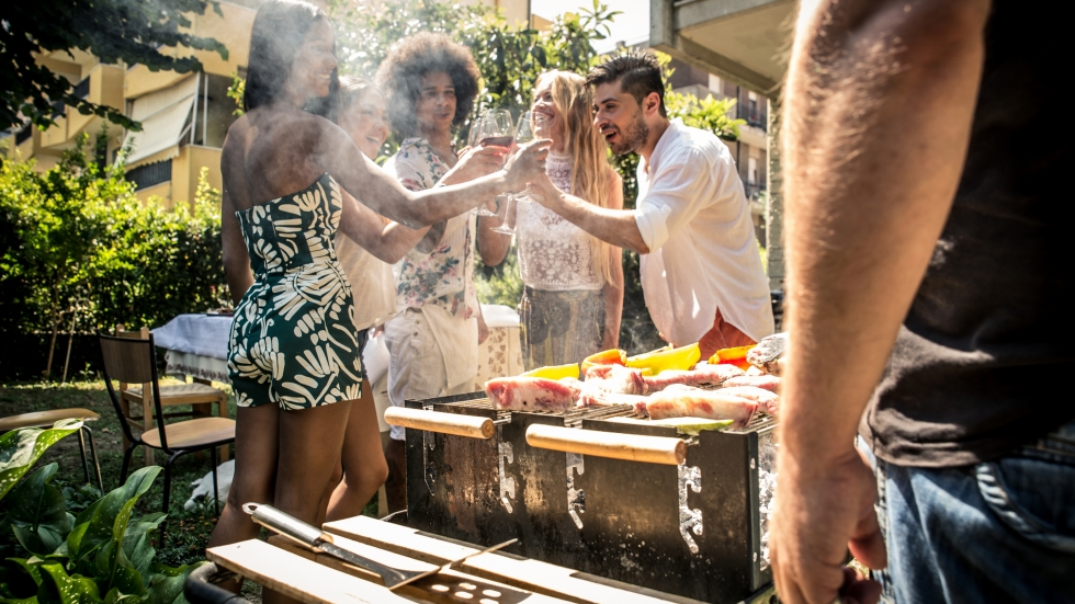 people toasting at a backyard barbeque