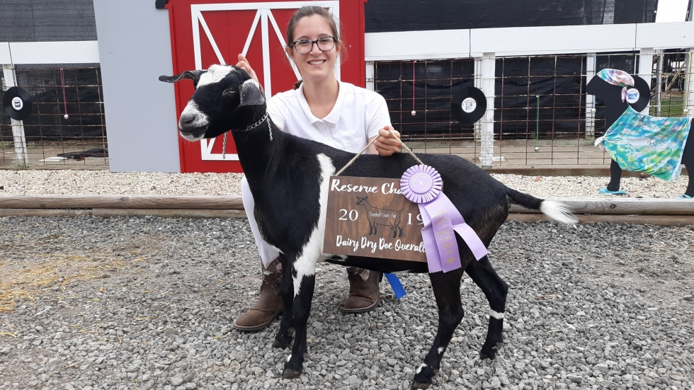 "Josie Wagner with her goat ""Lighting Bolt,"" winner of the 2019 Reserve Champion Dairy Dry Overall"" competition at the Trumbull County Fair [Josie Wagner]"