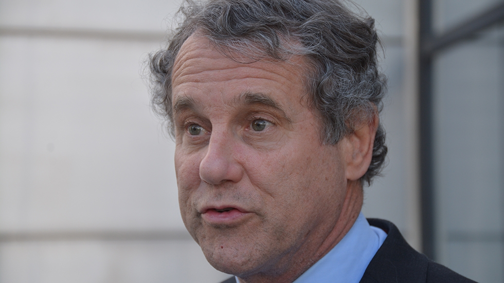 Sen. Sherrod Brown told reporters in an online news conference Friday that Congress should consider impeaching President Donald Trump again if his Cabinet and vice president do not attempt to remove him.