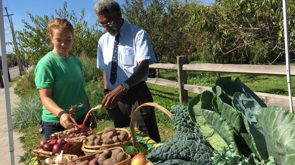 The Bumper Crop Farm Stand on Woodland Avenue sold produce on a pay-what-you-can basis.