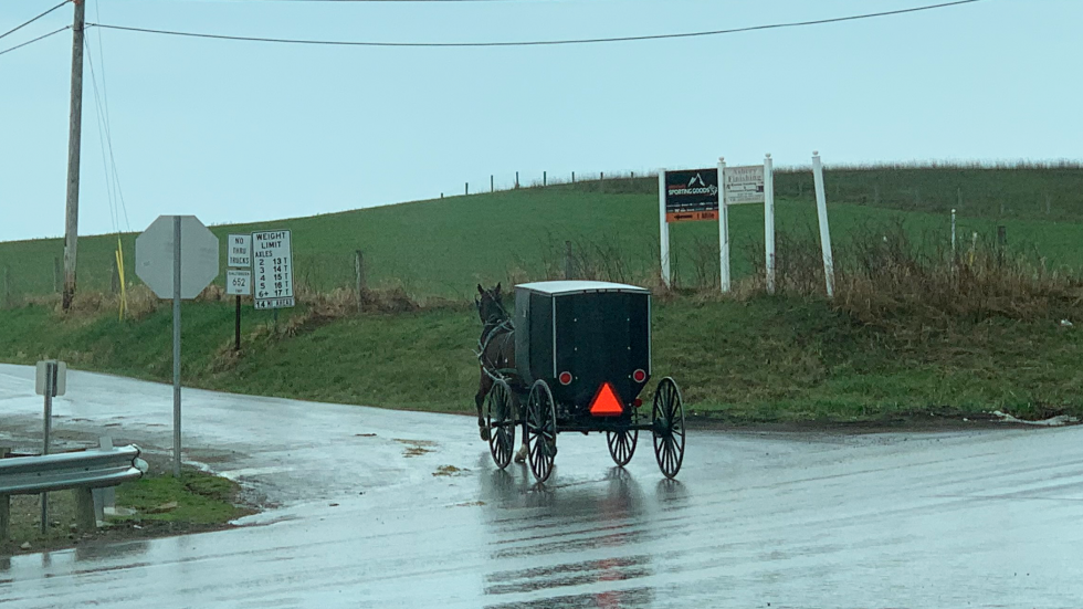 A horse and buggy travels through Amish countryside in Fredericksburg, Ohio on a rainy afternoon Thursday, Apr. 8, 2021. [Anna Huntsman / ideastream]