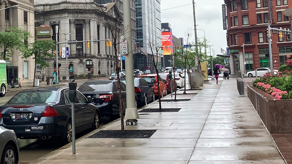 four small dead trees in Downtown Cleveland