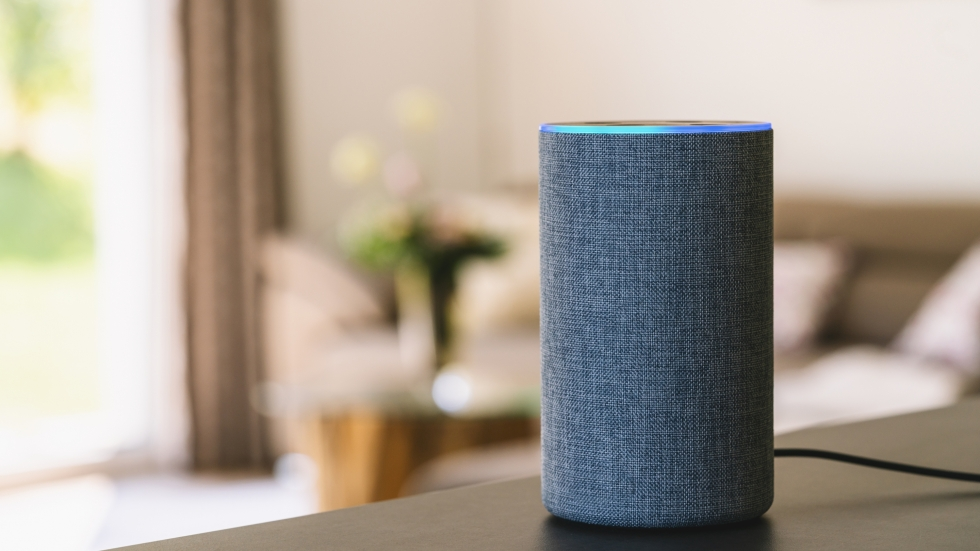 On The Sound of Ideas, we talk about Amazon Sidewalk and the issue of data privacy. [r.classen/shutterstock]