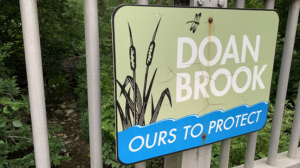 """A sign reading """"Doan Brook: Ours to Protect"""""""