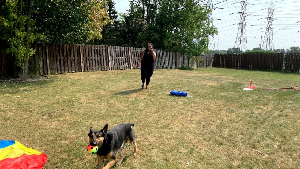 Cuyahoga Job and Family Services Eligibility Specialist Desiree Colasent is able to let her dog out while she's at work and play with him on her lunch break, which she wouldn't be able to do if she went into the office. [Lisa Ryan / Ideastream Public Media]