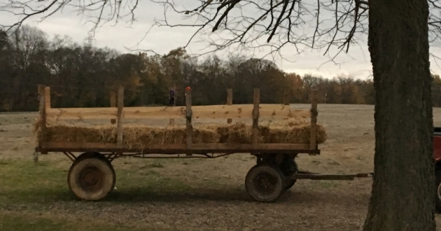 Wagon hitched for a hayride [Jo Ingles / Statehouse News Bureau]