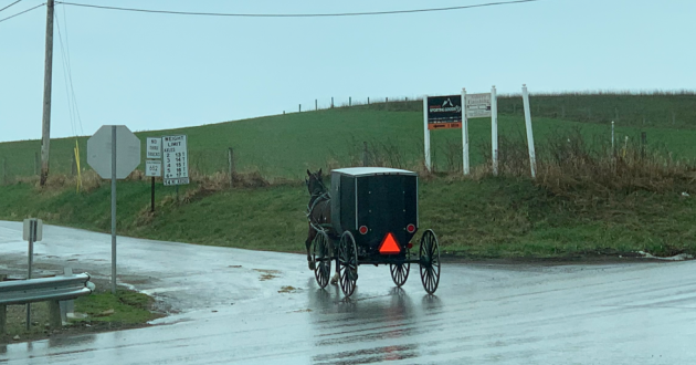 A horse and buggy travels through Amish countryside in Fredericksburg, Ohio on a rainy afternoon Thursday, April 8, 2021. [Anna Huntsman / ideastream]