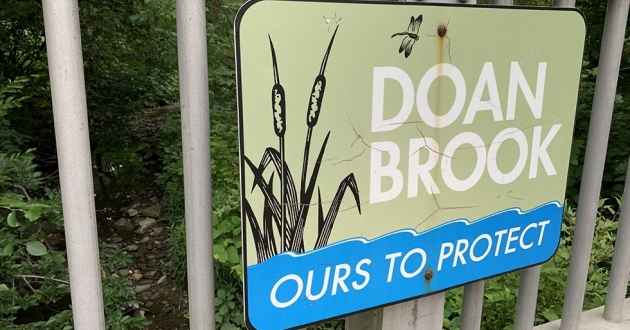 NEORD's proposal would remove the dam at Horseshoe Lake and restore the region to Doan Brook stream and watershed. [Annie Wu/ Ideastream Public Media]