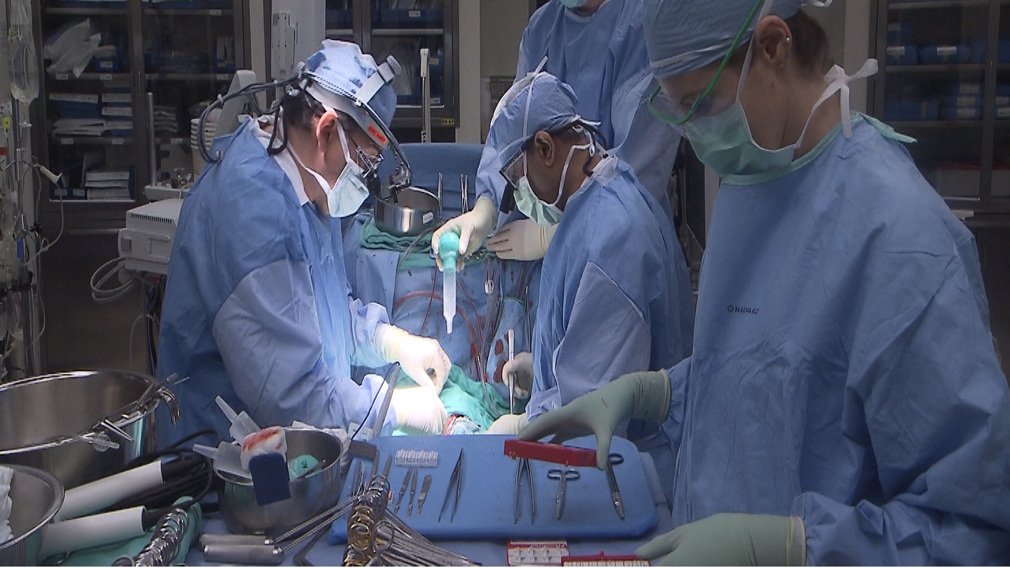 surgeons replacing a heart valve