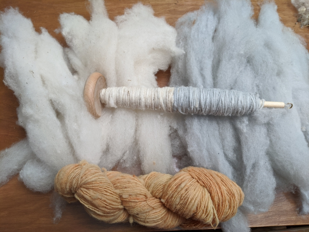 A spindle with a single strand of yarn laying across wool that has been carded into rolags.