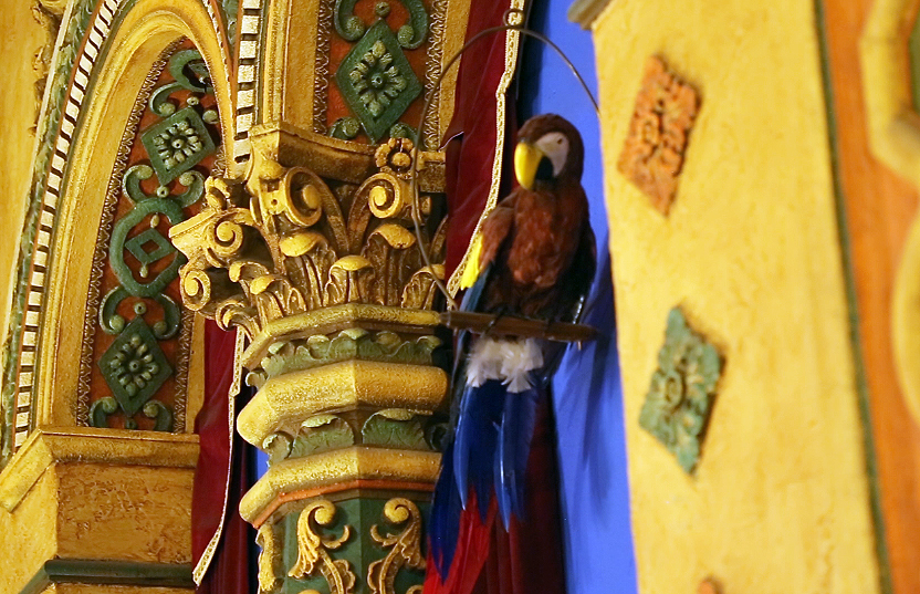 Loretta the parrot at the Akron Civic Theatre